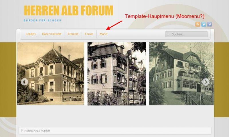 HerrenalbForum.JPG